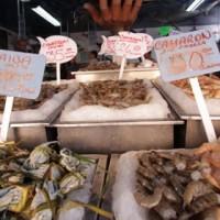 venta_de_pescados_y_mariscos